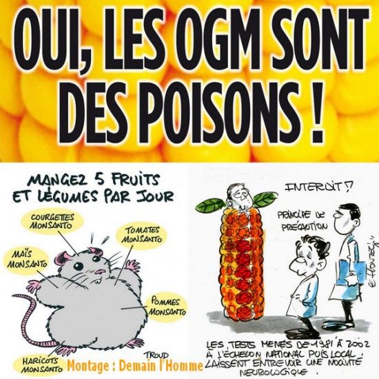http://www.terresacree.org/actualites/fichiers/images/2015-09/1443284520-g4e.jpg