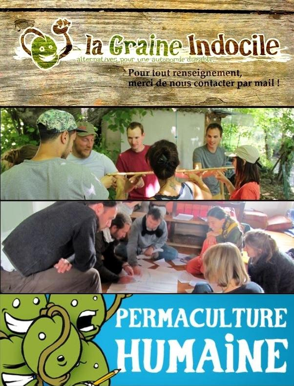 "La Graine Indocile.: STAGE ""PERMACULTURE HUMAINE"""