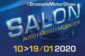 Salon du mensonge au 98ème Salon de l'Automobile de Bruxelles : Une action Extinction Rebellion