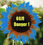 OGM Danger! Direct http